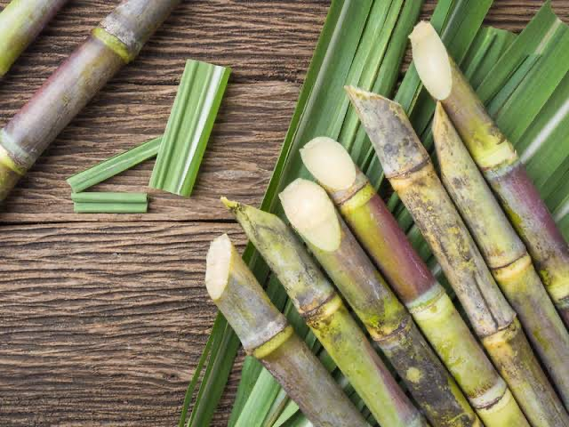 Experts recommend sugarcane consumption for boosting immunity, preventing cancer, others