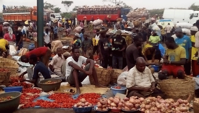 Inflation rate drops to 11.31% in February – NBS