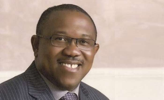 All you need to know about Peter Obi, PDP VP Candidate