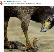 JAMB: EFCC pledges to deal with money-swallowing snake