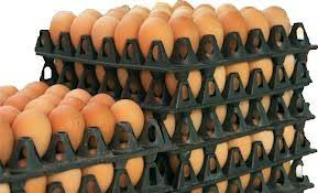 FG to create one million jobs from eggs production
